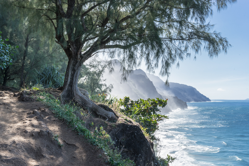 Hawaii 2015-pt2-1